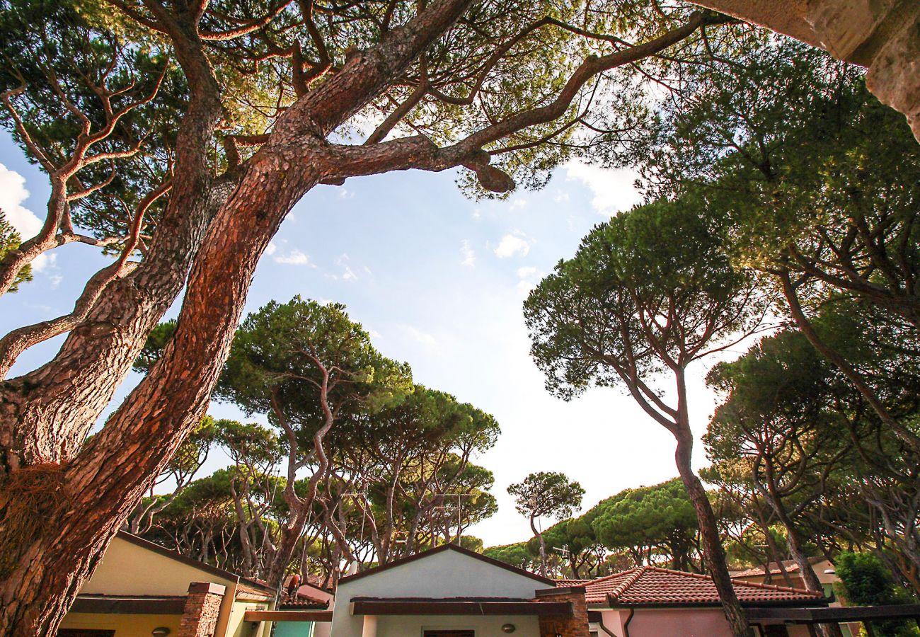 Marina di Grosseto-Wohnung Lavanda-In der Kühle des Kiefernwaldes