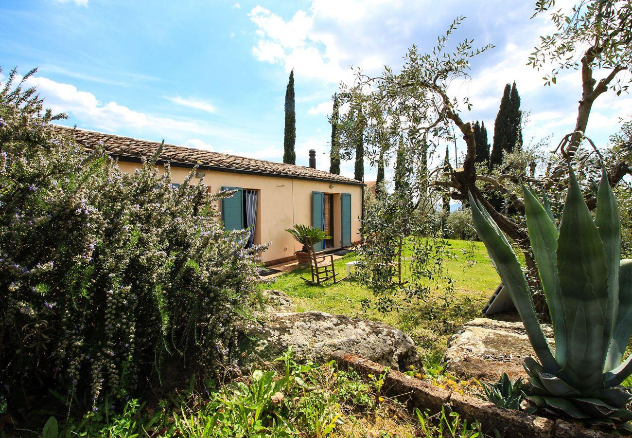 Ferienhaus in Roccatederighi - Casale Vezzoli