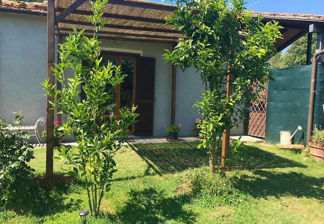 Ferienhaus in Scansano - Casa Barbara