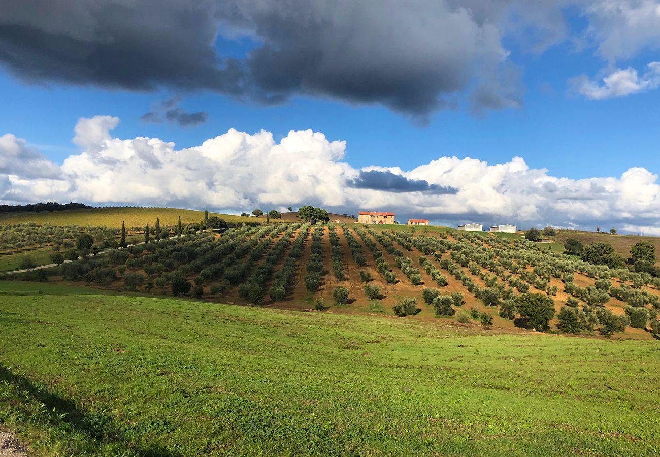 Casa a Magliano in Toscana - La Centurina