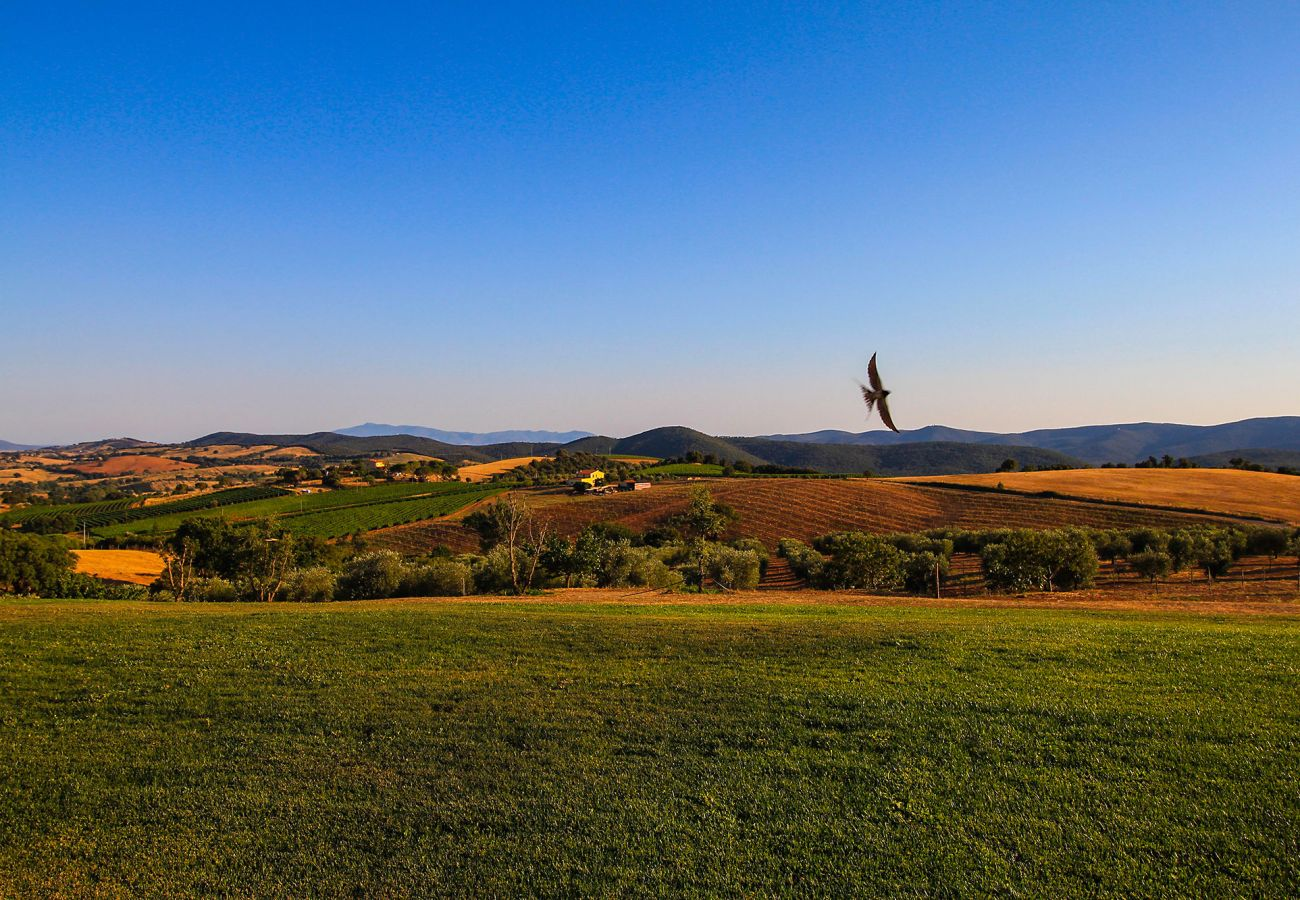 La Centurina in Tuscany - panoramic view from the terrace