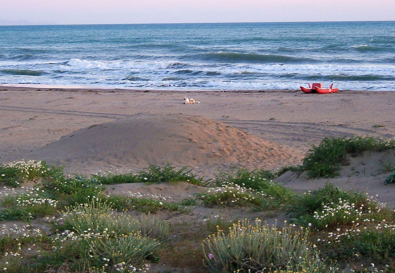 Marina di Grosseto Beach