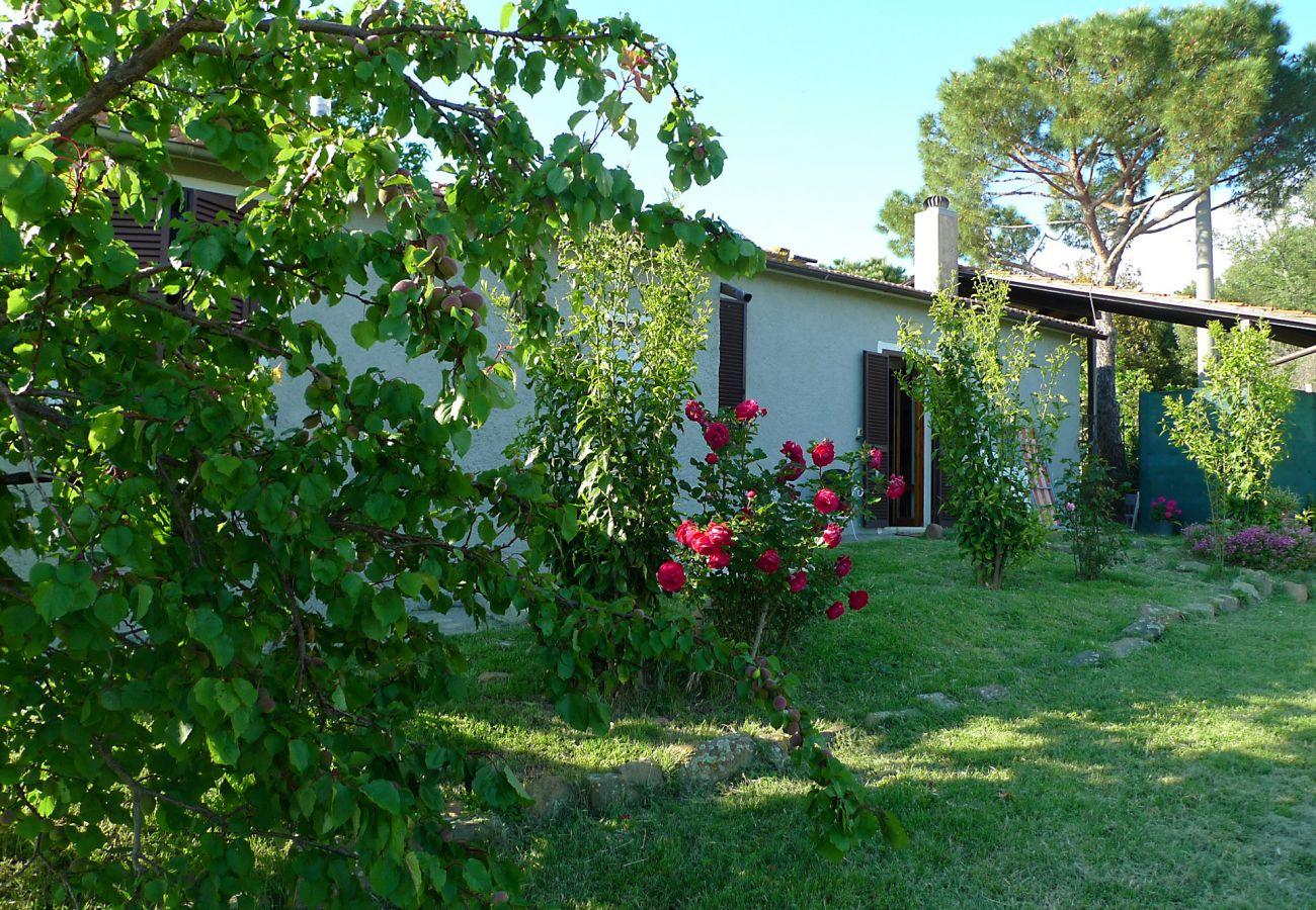 House in Scansano - Casa Barbara